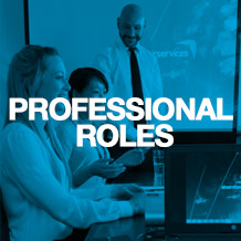 Professional roles